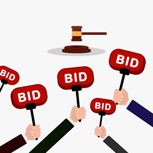Bidding at Domain Auction Sites